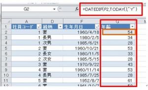 年齢結果Excel_result