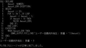 plsql_ユーザ定義例外1