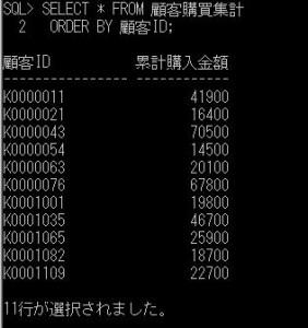 ora_update_顧客購買結果